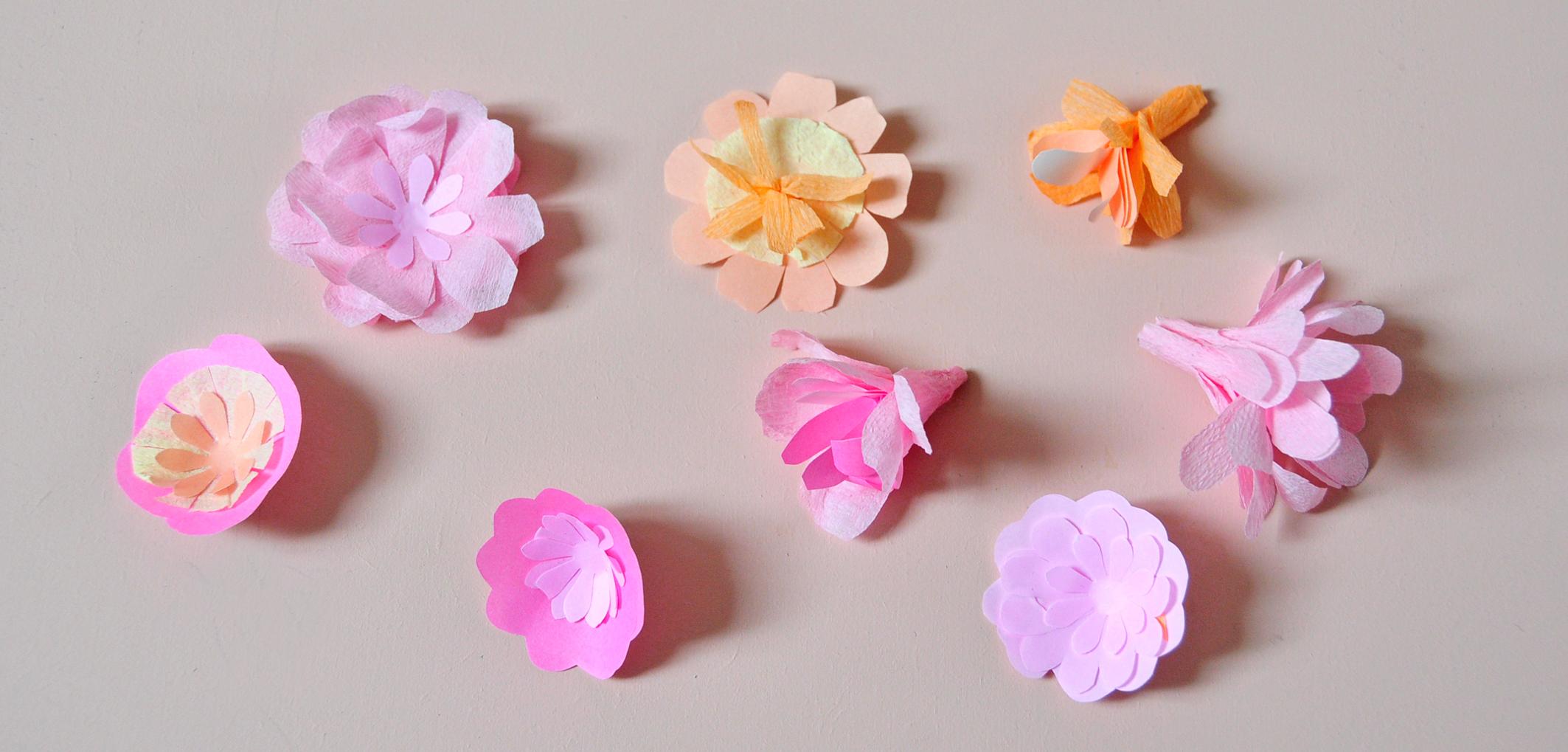 fleurs 1 b